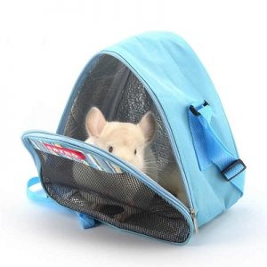 chinchilla in carrier