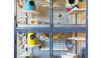 10 Super Tips to create the Perfect Chinchilla Cage Setup