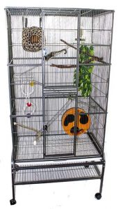 recreating the tree climbing experience in your chinchilla's cage