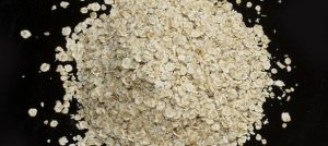 are oats safe for chinchillas